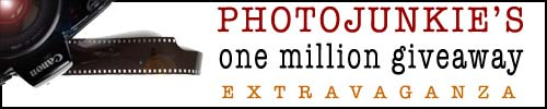 #68 Let Us Cheer You On aka Photojunkie's one million giveaway