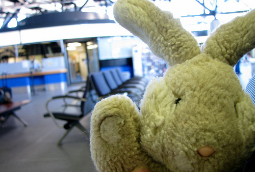 Travel Bunny at the Ottawa Train Station