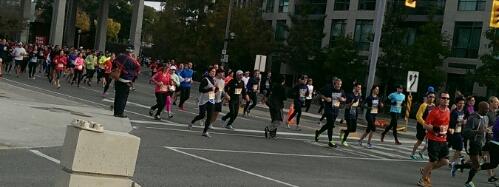 Toronto Marathon Runners